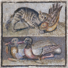 Central panel of a floor mosaic with a cat and two ducks. Opus vermiculatum, Roman artwork of the late Republican era, first quarter of the 1st century BC.
