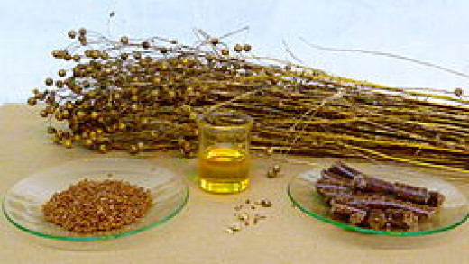 flax plants, flaxseeds and flaxseed (linseed) oil