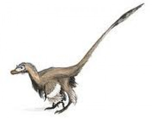 The absurd result of the dino-to-bird theory - Velociraptor degraded to a comical, deformed turkey