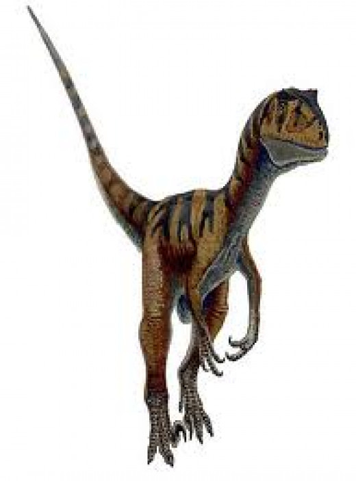 Deinonychus - one of the rare pictures of this creature without its supposed feathers