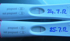 Early Result Pregnancy Tests - Are They Really A Good Idea?