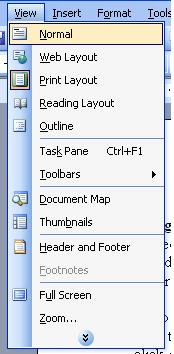 The View Menu in Microsoft Office Word 2003