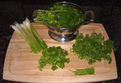 Freeze It - Preserve Your Herbs for Easy Cooking