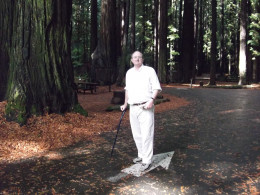 Amidst and among the Redwoods, on a cool Summer morning in an even-cooler Grove.
