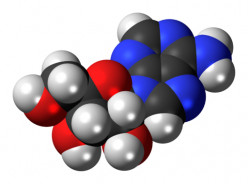 The Science Behind Why We Sleep - Adenosine and Melatonin