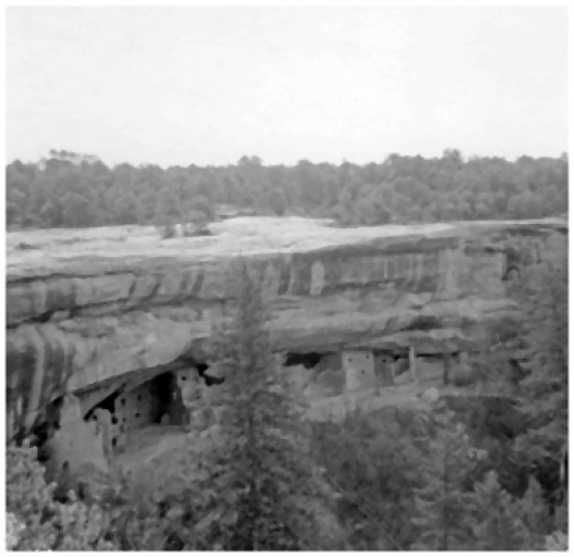 This is one of the Anasazi Cliff Dwellings near Canyon de Chelly AZ. The Navajos occupied them after the Anasazi were gone and farmed the valleys below. The cliff steps had an order you had to follow to reach the dwellings.