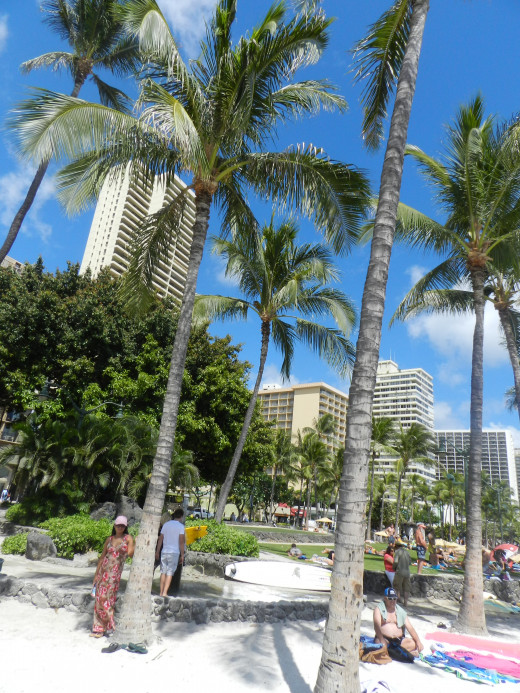 The beaches of Waikiki fill up with tourists and a few locals as the warm Hawaiian days go by.