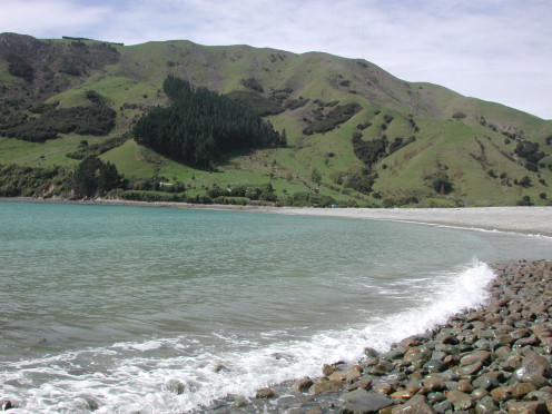 Cable Bay beach in the Nelson Region. Pepin Island in the background.