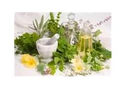 Natural ingredients used to make shampoo
