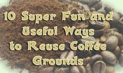 10 Fun Ways to Reuse Coffee Grounds
