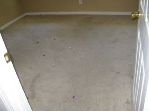 pic of stained carpet