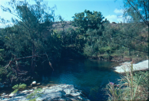 Tarzan Pond.  See the guy on the rope swing, on the left?  The stream filled from the right and drained at the bottom right.