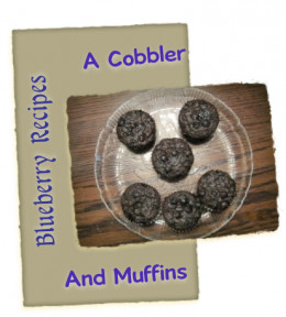 Chocolate and Blueberries=Delicious Recipes!
