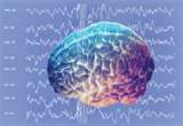 Brain waves can give us a great deal of insight into when and where optimal learning can take place.