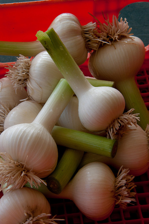 Garlic is a great alternative for treating colds