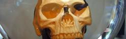 Piltdown Man: The Hoax That Disproves Evolution?
