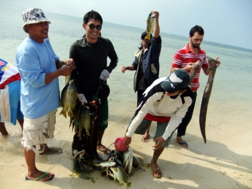 Fishing in the Red Sea: Finally, the fish were brought to shore