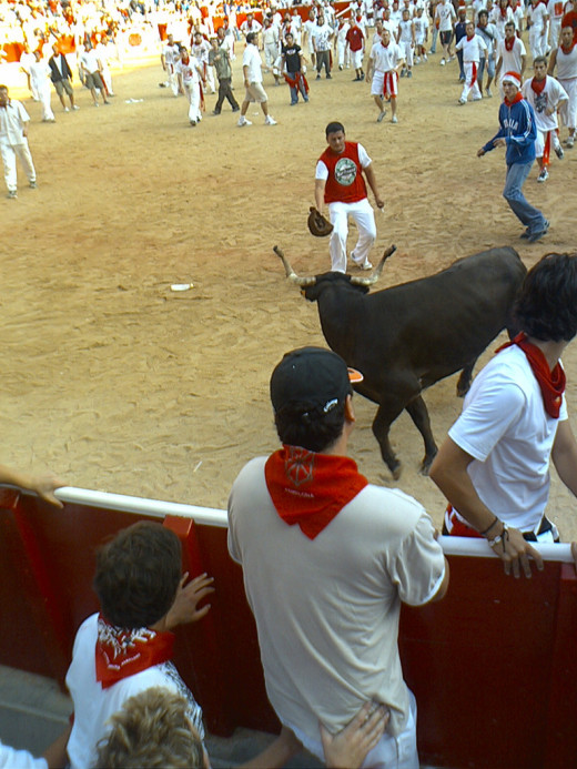 Run of the Bulls in Pamplona