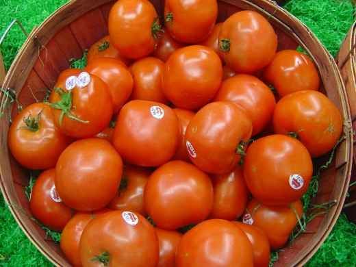 Fresh and slightly mushy tomatoes are good to use in making Dalmatian Salsa Base.