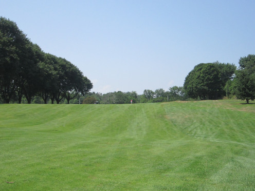 Look at How Green and Healthy these Fairways are!