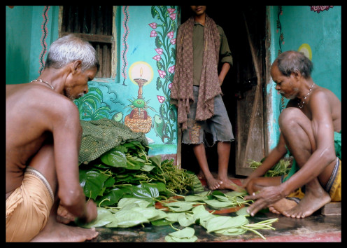Betel Leafs getting ready for sale