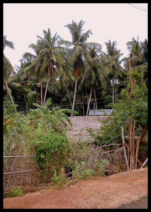 Village itself