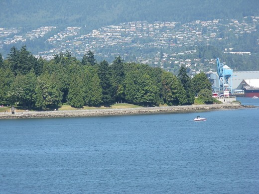 Part of Stanley Park and the seawall path