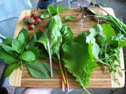 Twice-weekly harvest from a patio salad garden.  It doesn't look like much in photos, but wait until you have to eat it ;-)