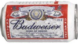 Budweiser beer, a good hangover cure