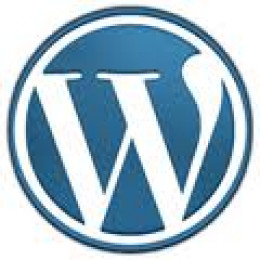 Wordpress is an open source web development tool that makes creating a website easy to do. Wordpress can be used to create anything from personal blogs to fully functional ecommerce websites.