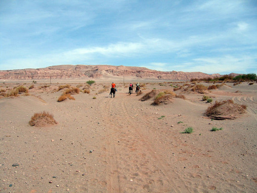 This is the driest desert in the world. A really terrible place for the unwary.