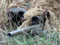 Notes on Camouflage and Concealment