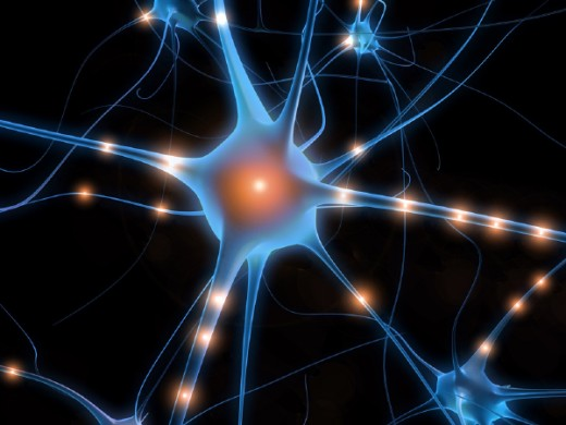 Artist's conception of a neuron. Neuroplasty is the ability of the brain to create new connections between neurons.