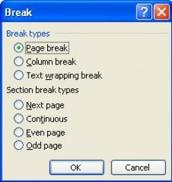 Using The Insert Menu In Microsoft Office Word 2003