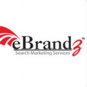 ebrandzinc profile image