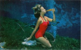 Underwater Mermaids at Weeki Wachee Springs (old postcard photo) ~ See today's mermaids there!