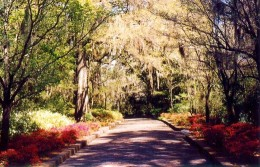 Alfred B. Maclay State Gardens in Tallahassee