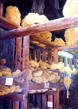 Just some of the natural sponges at the Greek diving capital of the world ~ Tarpon Springs