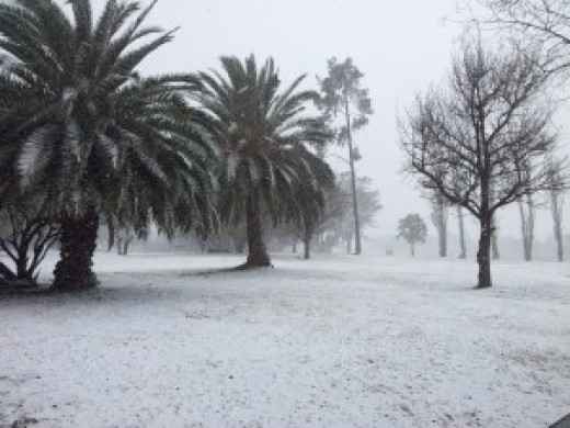 @ Modderfontein ~~ http://www.nanima.co.za/2012/08/snow-in-roshnee-and-surrounds/20120807_123822/