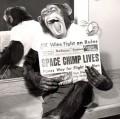 Ham the Chimpnaut