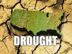 2014 Drought:Impact on America's Most Important Crop