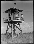 World War II: Guard tower similar to those at Rohwer. This particular camp, near Denson, was closed and its inmates sent to Rohwer.