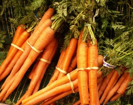 Carrots provide important nutrients for you whole body, especially your eyes.