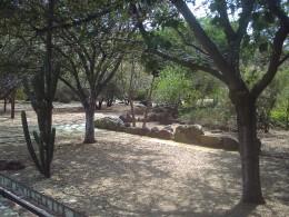 Jardín Etnobotánico