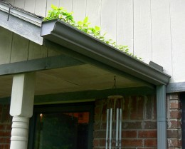 Cleaning gutters is stinky, but not hard or expensive. When delayed, however, rain can back up under the shingles and damage the roof.