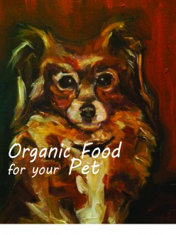Shinto's Pet Food – Organic Dog Food