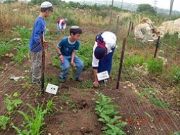 For kids, the chance to grow and cook their own food is an invaluable experience.