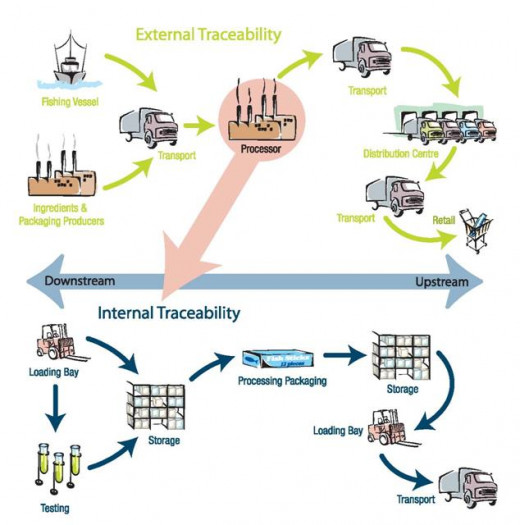 Figure 4. Components of external and internal traceability in the seafood distribution chain⁴