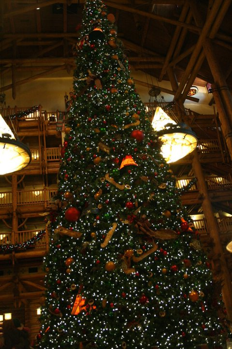 The Christmas tree in the lobby is gigantic!