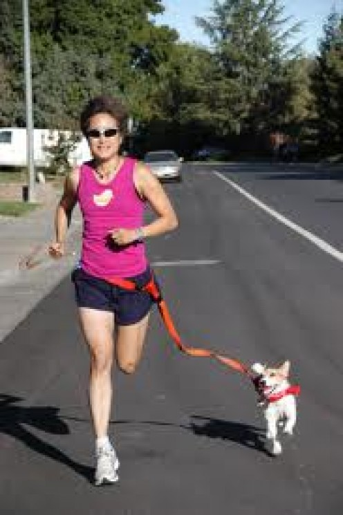 Jog with your Dog for Great Exercise. It's a great way for the both of you to get into shape and stay in shape.